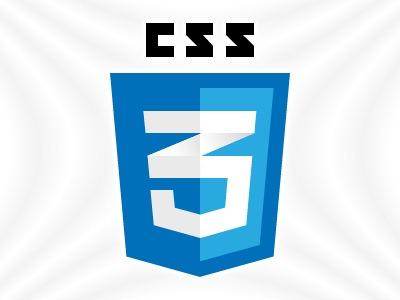 CSS3Logo_406A9E5E